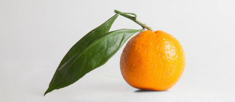 Orange from Caroline Shaw's Orange album